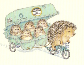 hedgies-on-board1
